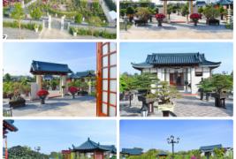Vườn Bonsai DONA - Đẹp, đẳng cấp và chuyên nghiệp nhất Miền Nam
