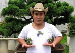 Bonsai tí hon giá hàng chục triệu đồng vẫn cháy hàng