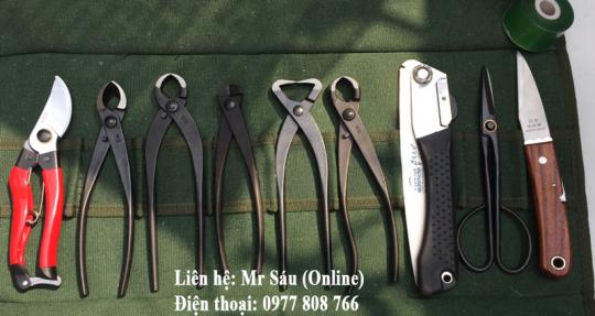 Bộ dụng cụ cắt tỉa cây cảnh T25